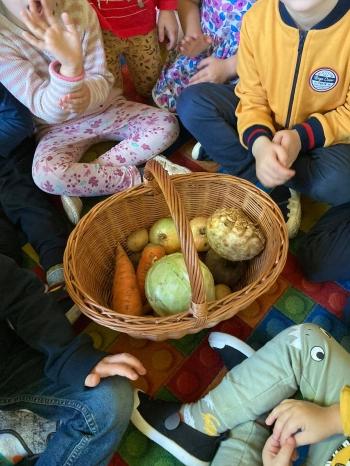 Poznajemy warzywa (1)