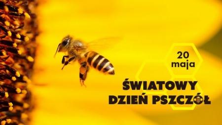 Światowy Dzień Pszczoły...